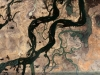mali_fiume-niger